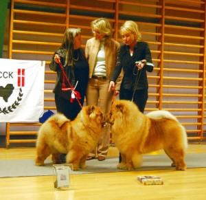 BIR BIM 2012 Jægerspris