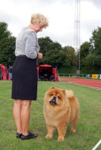 Chow Chow Piuk Chow Sweet Queen Of Phantasy, Susanne Lunau