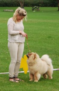 Chow Chow Sumichow´s Flying Smilla