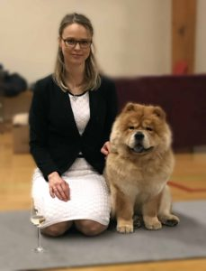 Chow Chow dansk champion Piuk Chow Sweet Magic Of Phantasy Stine Hjelme
