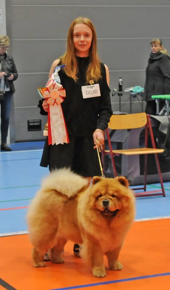 Chow Chow Barn og Hund Louise Larsen