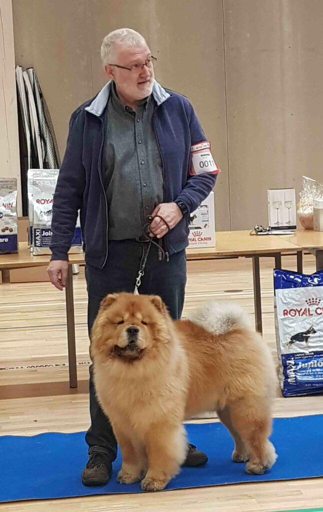 Chow Chow Miketilla Monte Carlo, Preben Krog, Bedste veteran Fredericia 2019