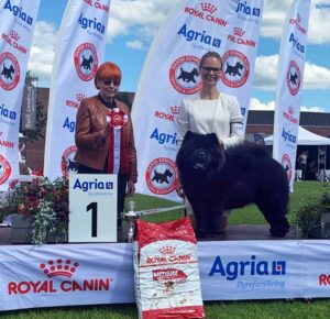 Chow Chow Best In Show Veteran Piuk Chow Possesses Black Passion, Stine Hjelme og Marie Petersen