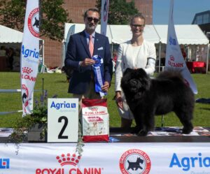 Chow Chow Best In Show Veteran Piuk Chow Possesses Black Passion, Stine Hjelme og George Kostopoulos